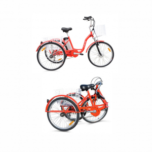 Triciclo Elettrica a tre ruote con pedalata assistita, bicicletta per