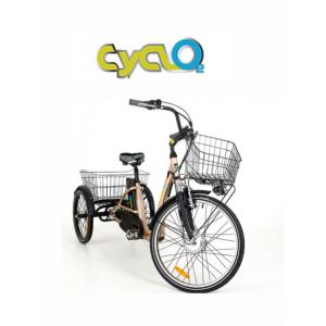 Bicicletta Elettrica tre ruote con pedalata assistita, bicicletta da