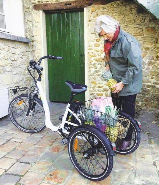 Bicicletta Elettrica Triciclo Elettrico Bicicletta A Tre Ruote Per